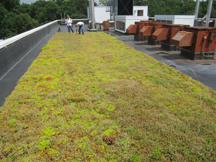 ... For All Your Green Roof Needs. We Sell DIY Kits And Can Also Provide  Job Site Supervision Or Training For Professionals And Homeowners.