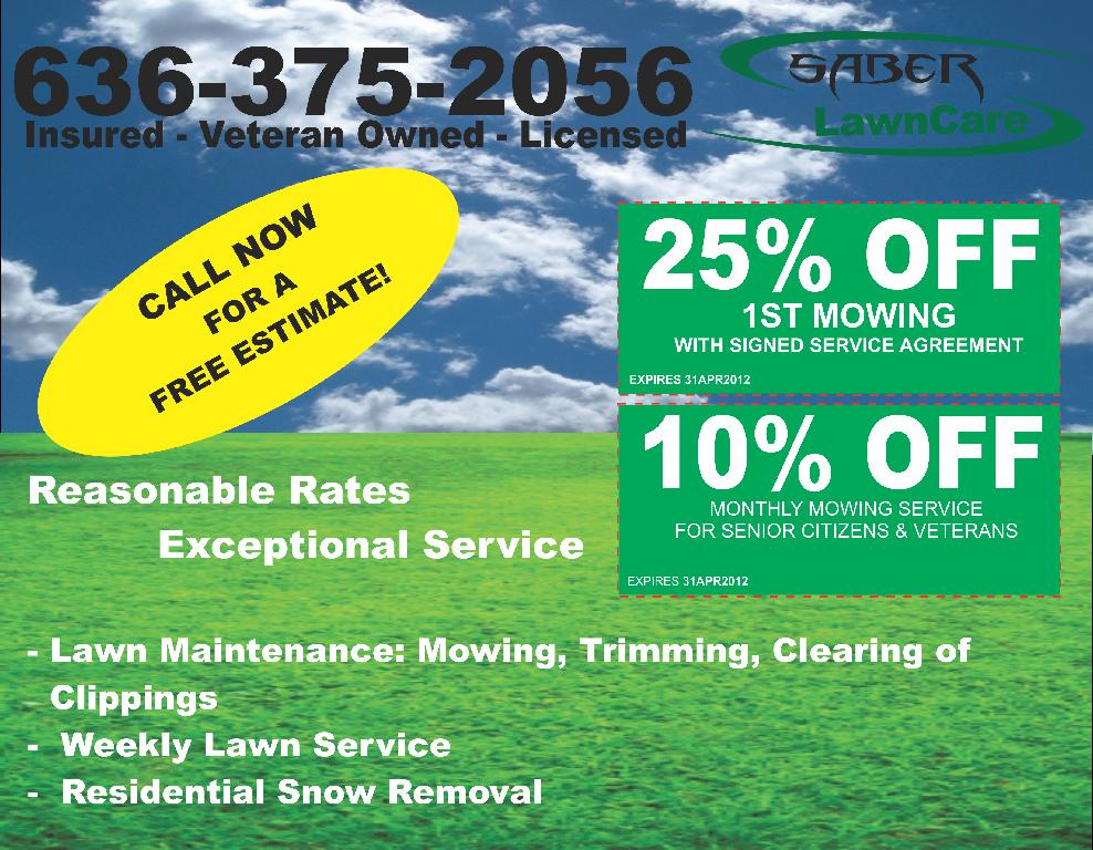 Tico s lawn service inc for Lawn treatment service