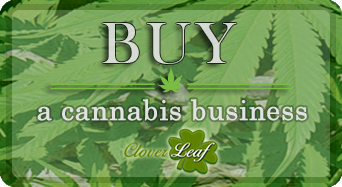 Buy a Cannabis Business