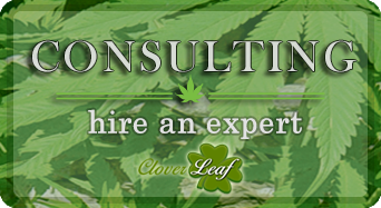 Get a Cannabis Business Consultation