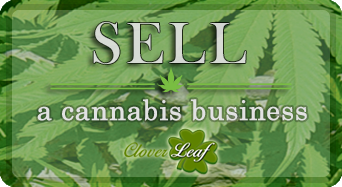 Sell a Cannabis Business
