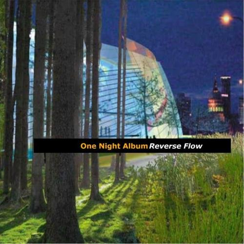 This is the CD Case Design for One Night Album