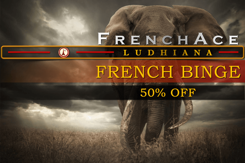 http://ludhiana.frenchace.com/p/french-batches-in-ludhiana.html